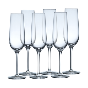 Set/6 Champagnerglas 21cl BASIC